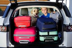 Family vacation suitcases Labrador dog boy kid baggage blue pink orange house sun summer luggage car ready holidays green trank bo. Boy are loading multicolored Stock Photo