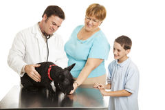 Family at the Vet Royalty Free Stock Image