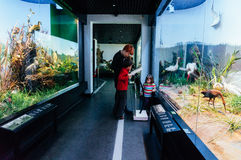 Family visiting Natural History Museum. A family in a glass tunnel in the Natural History Museum, Romania with wild birds in their natural habitat on both sides royalty free stock photo