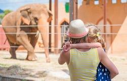 Family visiting zoo. Stock Photo