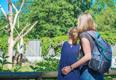 Family visiting zoo. Stock Photos