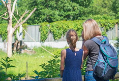 Family visiting zoo. Royalty Free Stock Photography
