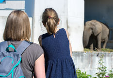 Family visiting zoo. Stock Photography