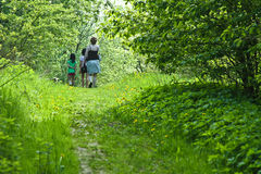 Family walk. In spring in denmark Stock Photography