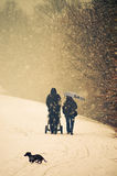 Family walk. In a park in winter time Royalty Free Stock Photo