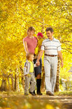 Family on walk Royalty Free Stock Images