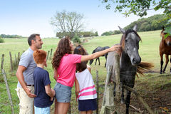 Family walk in country field Royalty Free Stock Photography