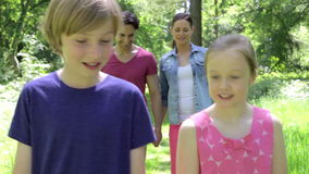 Family Walking Along Summer Woodland Path Together stock video footage