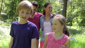 Family Walking Along Summer Woodland Path Together stock footage