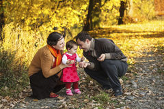 Family walking in autumn park Royalty Free Stock Photography