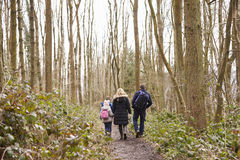 Family walking away from camera through a wood Royalty Free Stock Images