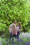 Family walking in field of bluebell flowers Royalty Free Stock Photos