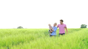Family Walking In Field Carrying Young Baby Son stock video