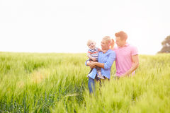Family Walking In Field Carrying Young Baby Son Stock Image
