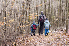 Family walking in forest Royalty Free Stock Photo