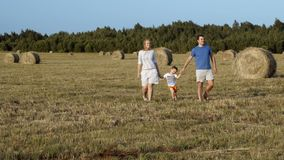 Family walking holding hands in the field stock video footage