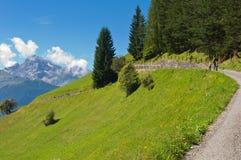 Family walking on mountain path, Swiss, Wiesen. Family walking on mountain path, beautiful view in background, Swiss, Wiesen Royalty Free Stock Image