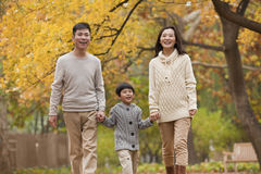 Family walking through the park in the autumn Royalty Free Stock Image