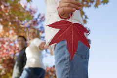 Family walking in park in autumn, focus on girl (7-9) holding red maple leaf in foreground, side view stock photos