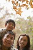 Family walking through the park in the autumn, little boy sitting on his fathers shoulders royalty free stock photography