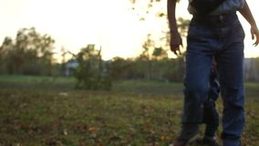 Family walking a pet. A young mother and baby in the autumn park in the evening play with their black and white dog stock video footage