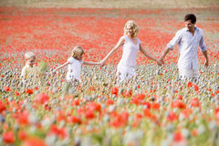 Family walking in poppy field holding hands Royalty Free Stock Images