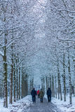 Family walking in snow covered forest Royalty Free Stock Images