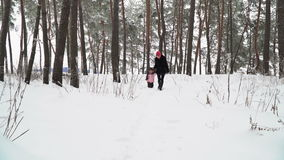 Family walking on a snowy forest stock video