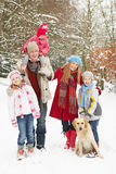 Family Walking Through Snowy Woodland royalty free stock photography