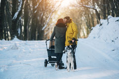 Family walking with the stroller in the winter. Young family and a dog walking with a stroller in the winter forest Royalty Free Stock Photo