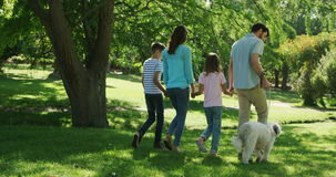 Family walking with their dog in the park on a sunny day stock video footage