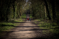 Family walking to the Echo Stock Photography