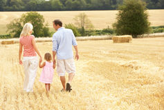 Family Walking Together Through Summer Harvested F Stock Image