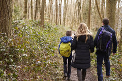 Family walking together through a wood, back view close up Stock Photo