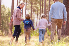 Family walking towards a forest, back view Royalty Free Stock Photography