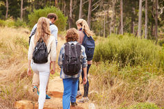 Family walking on a trail into a forest, back view Stock Images