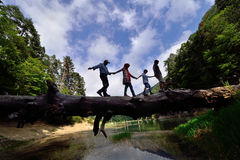 Family walking on the tree in a dangerous manner Stock Images