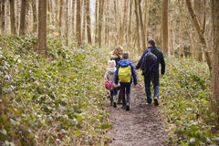 Family walking through a wood, back view, mum turning round Royalty Free Stock Photography
