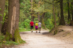 Family walking in the woods Stock Photography