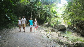 Family walks on the walkway in rainforest stock video