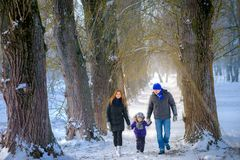 Family walks in the winter wood stock image