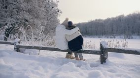 Family in warm clothes hugging admiring the winter landscape stock footage