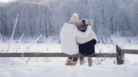 Family in warm clothes hugging admiring the winter landscape stock video