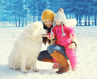 Family in winter day, happy mother and child walking with white Samoyed dog Stock Photo