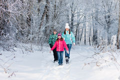 Family in winter park. Happy family in winter park Stock Images