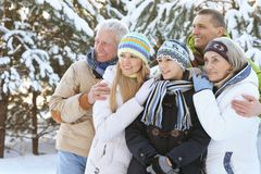 Family in winter park. Big happy family having fun in winter park covered with snow Stock Image