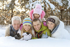 Family in winter park. Big happy family having fun in snow covered winter park Stock Photos