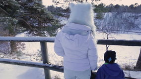 Family winter walk. stock video footage