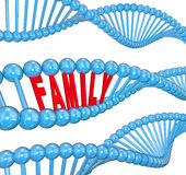 Family Word DNA Strand Biology Hereditary Traits. Family word in a 3d strand of DNA to illustrate hereditary traits or attributes passed from one generation to stock illustration