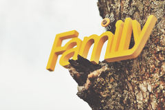 Family word painted in yellow hanging on tree Royalty Free Stock Images